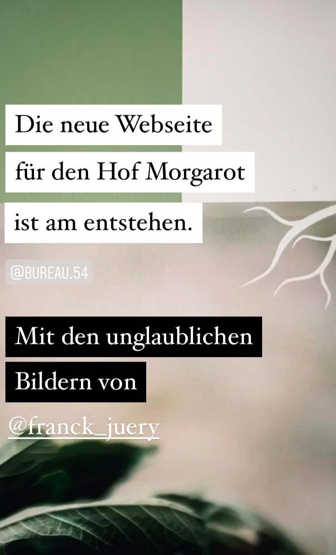 Instagram Post Abschnitt der Morgarot Webseite