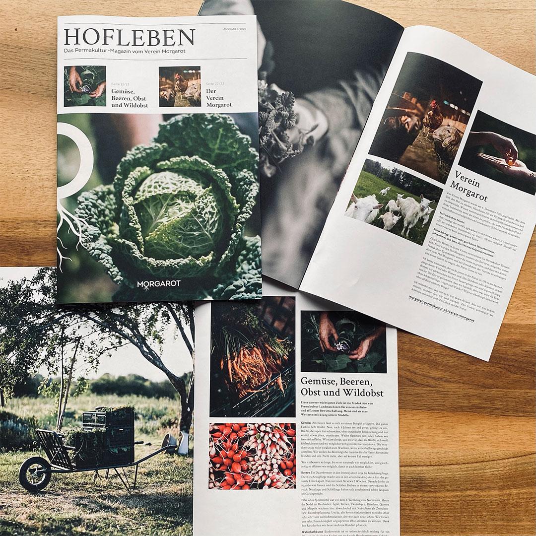 Magazin Hofleben für Morgarot